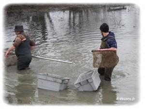 Les pêcheurs – Photo : Eric BIGORNE